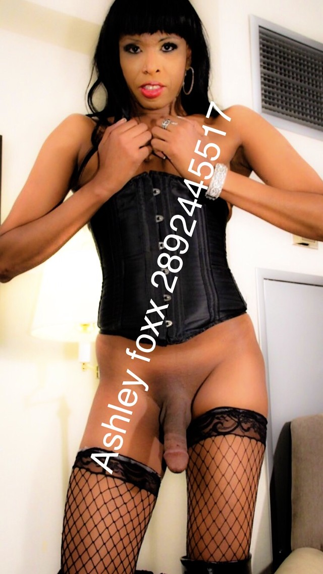 Escort 289-244-5517 Brantford-Woodstock, Downtown Hamilton transx