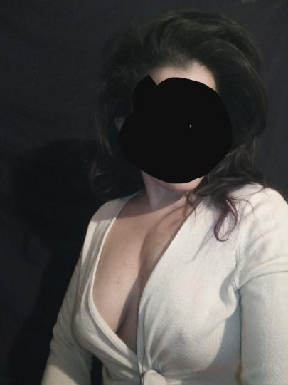 Escort 186-024-15311 Capitol Area HARTFORD escortalligator